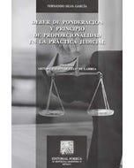Deber de ponderación y principio de proporcionalidad en la práctica judicial