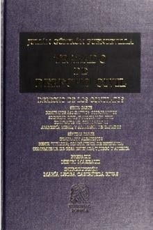 Tratado de Derecho Civil XIX