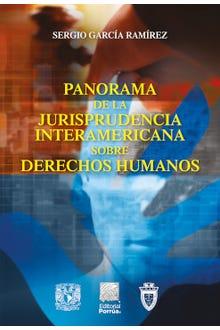 Panorama de la jurisprudencia interamericana sobre derechos humanos