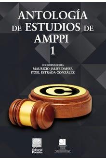 Antología de estudios de AMPPI 1