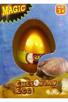 Huevo que crece en el agua y sale una tortuga